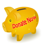 donate-piggy-transparent